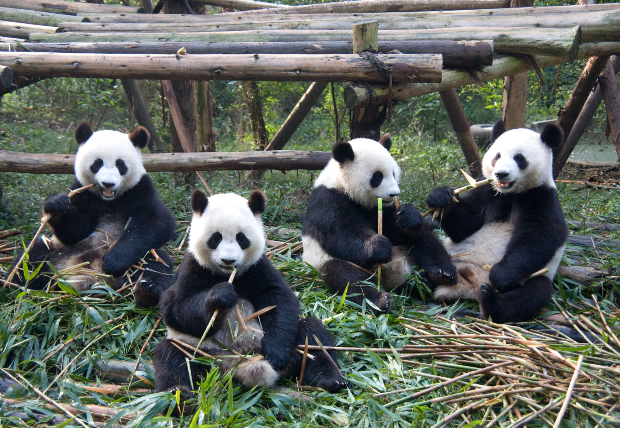 Geography School Trip To China 10 Days
