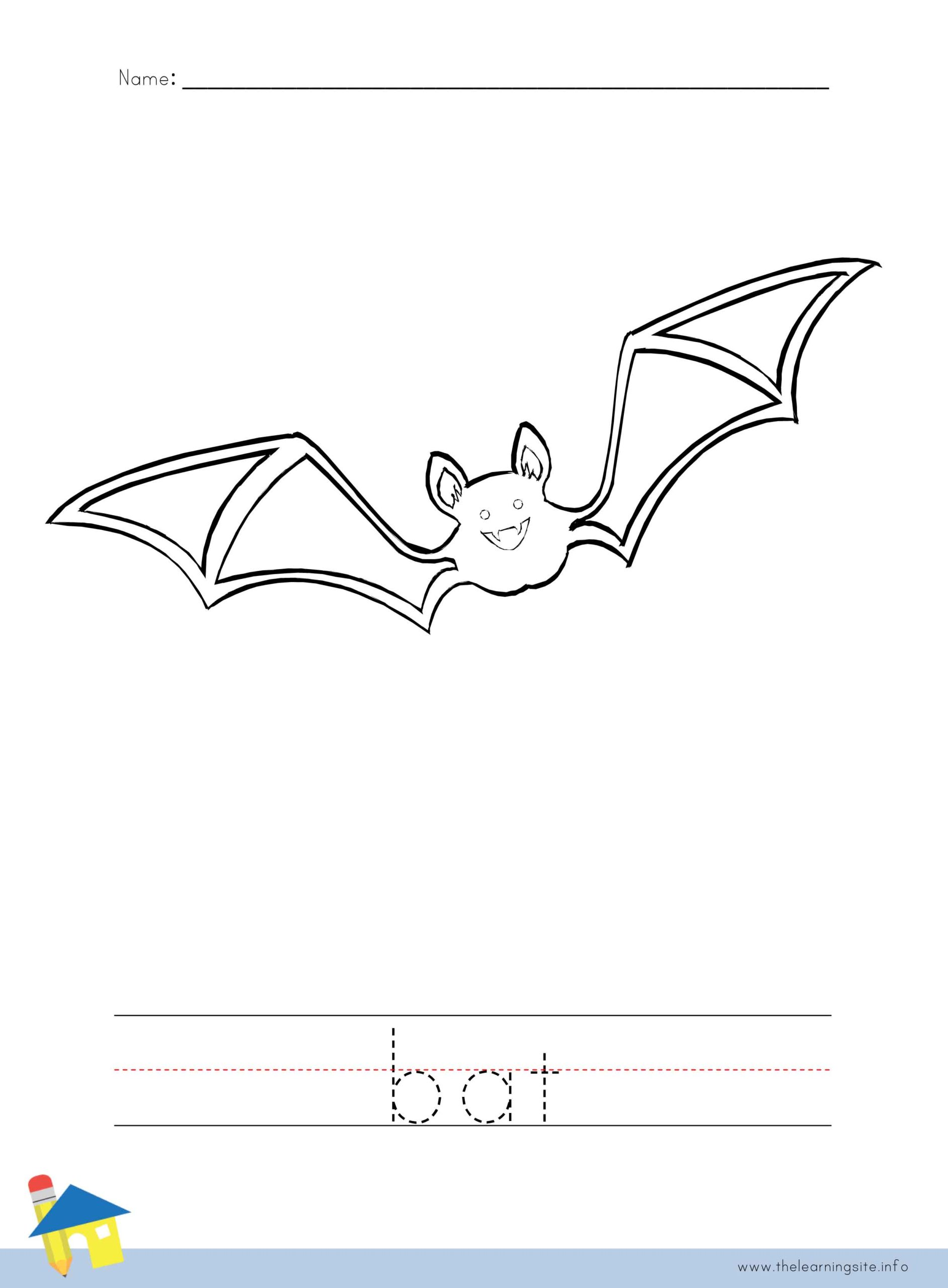 Bat Coloring Worksheet The Learning Site