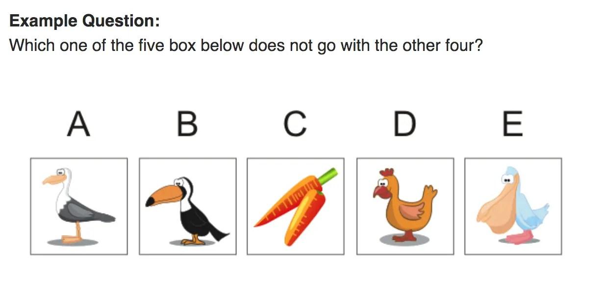 Non-verbal IQ Test
