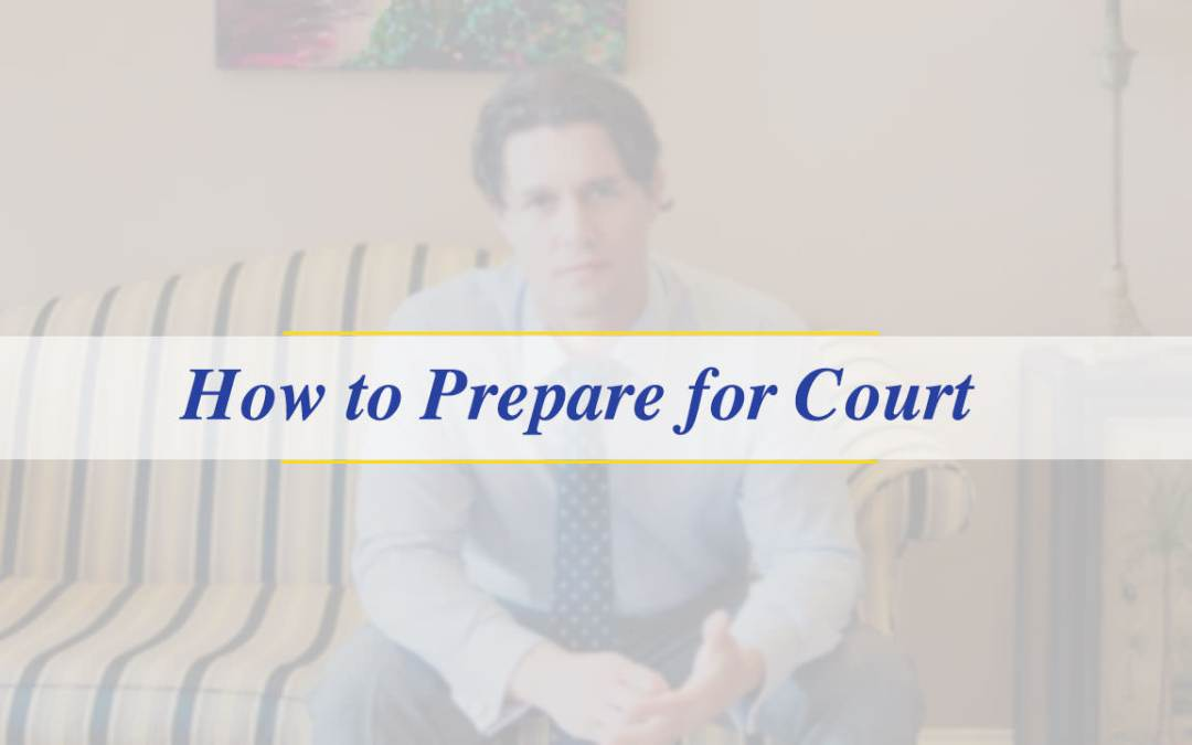 How To Prepare For Court (Video)
