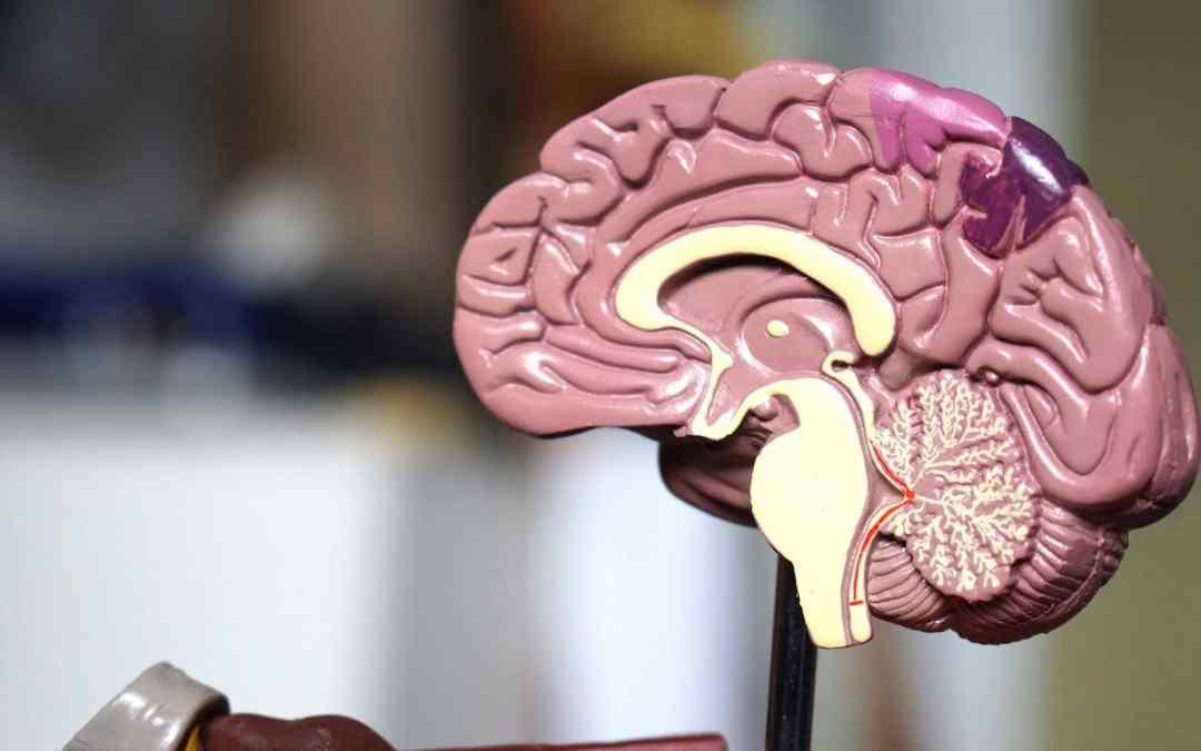 Neurosurgery in lagos