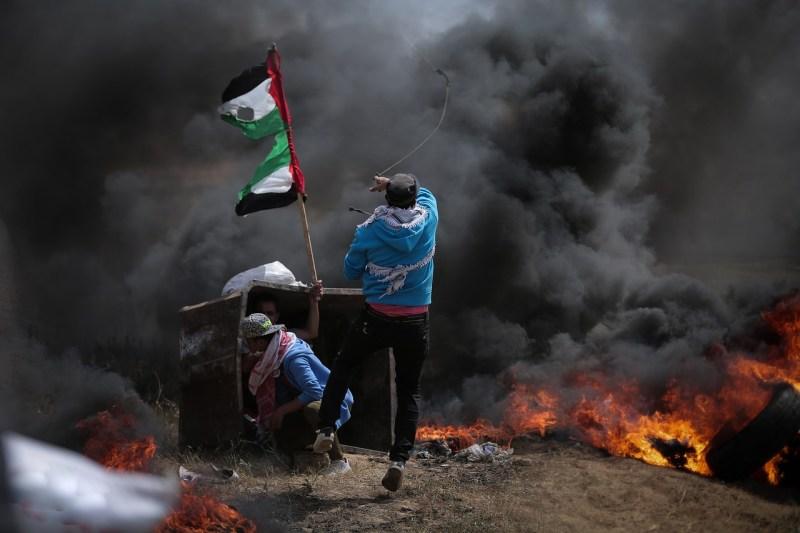 פלסטיני