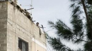 מעצרו של אבו בכר בכפר הפלסטיני יעבד, ביוני. צילום: דובר צהל