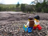 A day at Girraween National Park