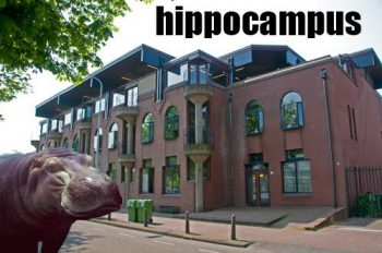 the hippo pun was our regime mascot...