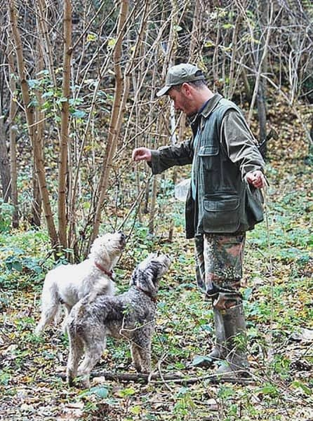 Truffle hunting in Tuscany