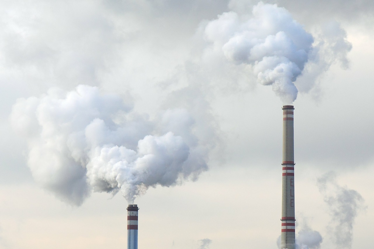 What Is Fossil Fuel Divestment? All You Need To Know