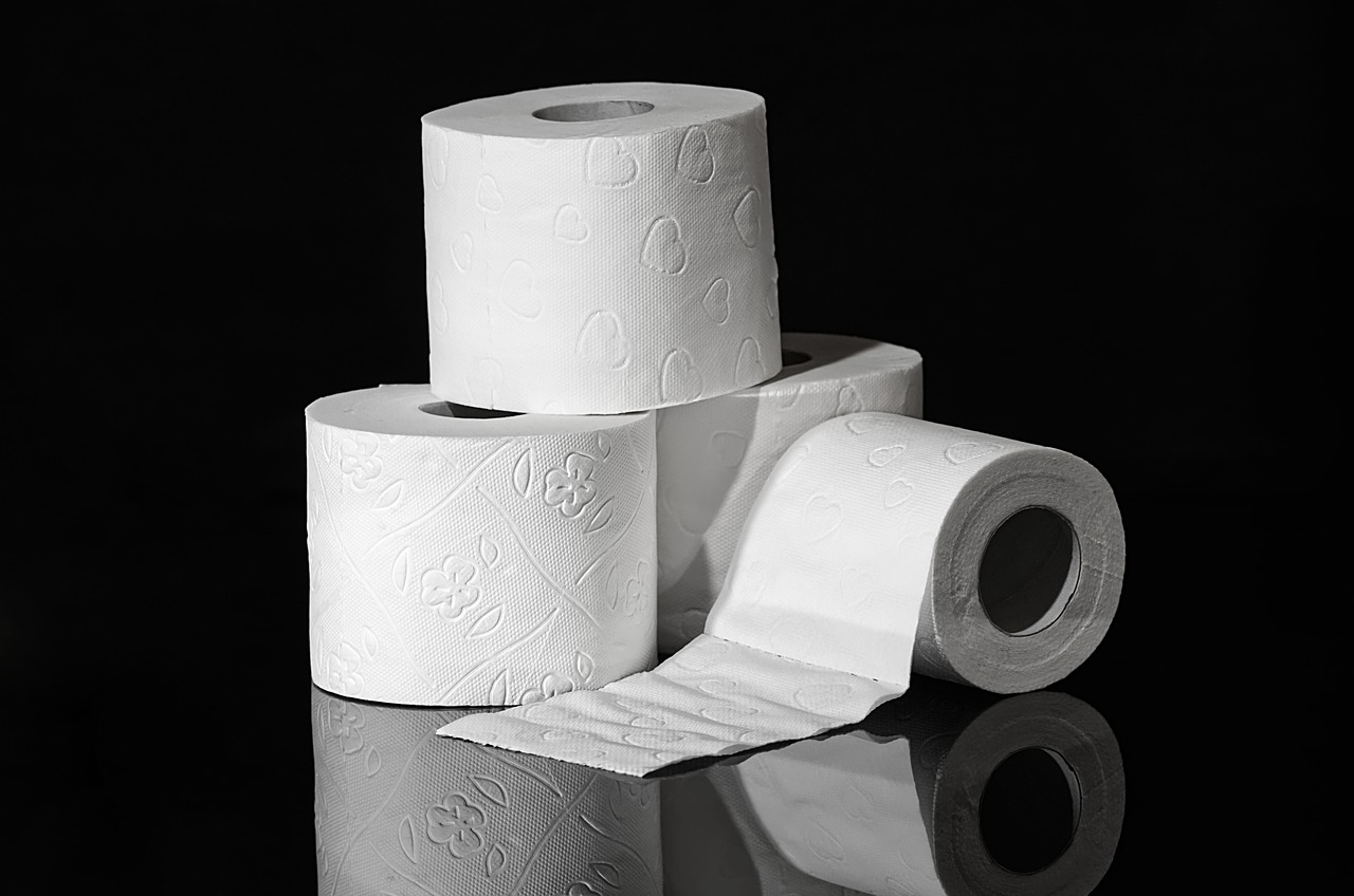 10 Amazing Toilet Paper Without Plastic Packaging For a Change