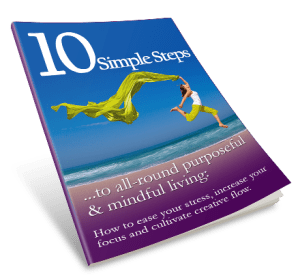 10 simple steps book cover