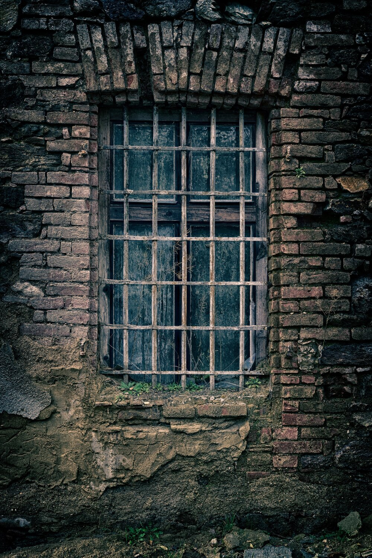 pexels-pixabay-235986.jpg