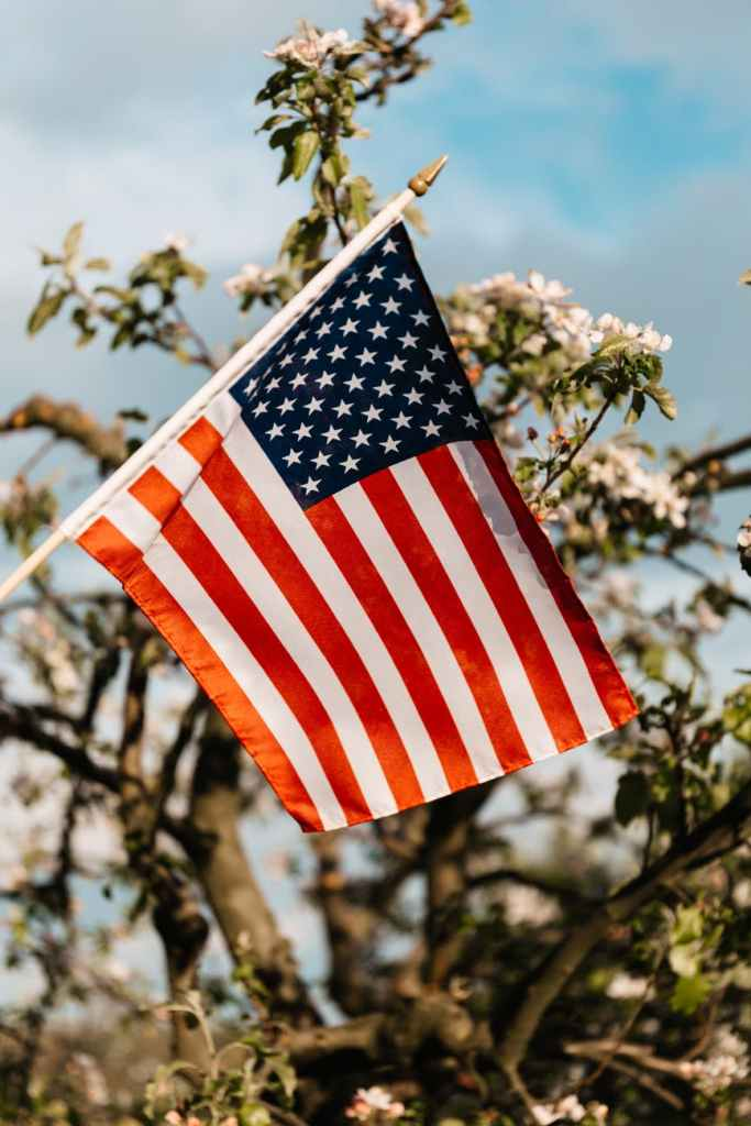 flag of usa near blooming bush under cloudy sky
