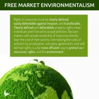 free market environmentalism pollution