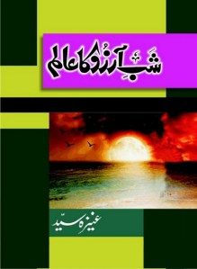 Shab e Arzoo Ka Alam Novel By Aneeza Syed Pdf Download Free