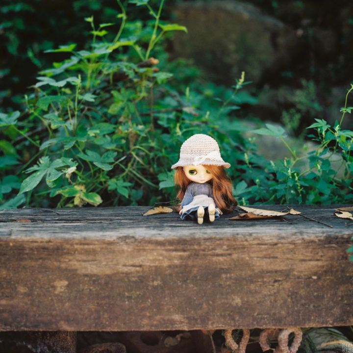 Blythe doll with Hasselblad