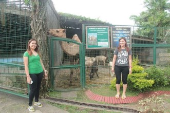 Arianne and Yvonne with Camel