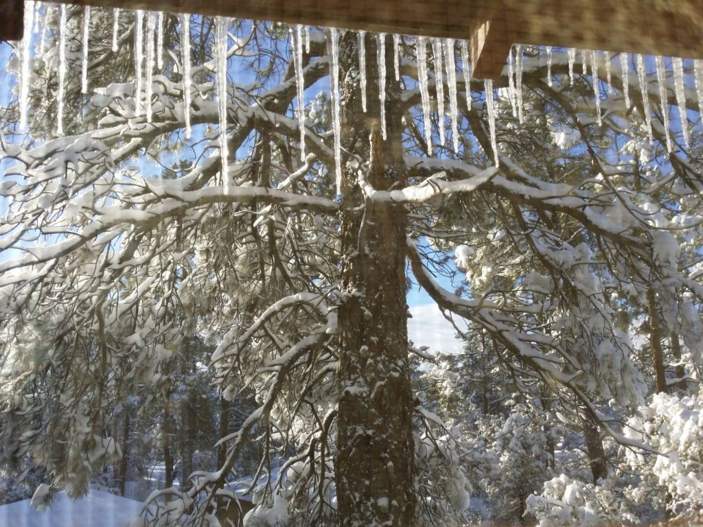 Christmas Day Icicles