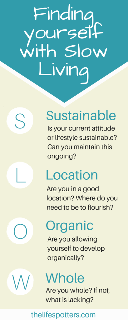 infographic depicting the 4 S.L.O.W questions as bullet points