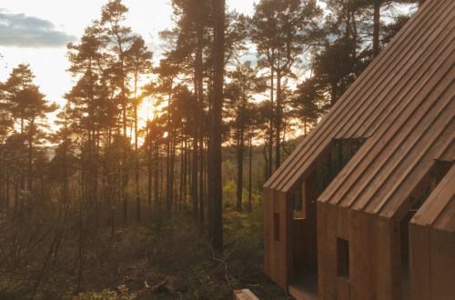 Image of a cabin amongst tall pine trees at sunset