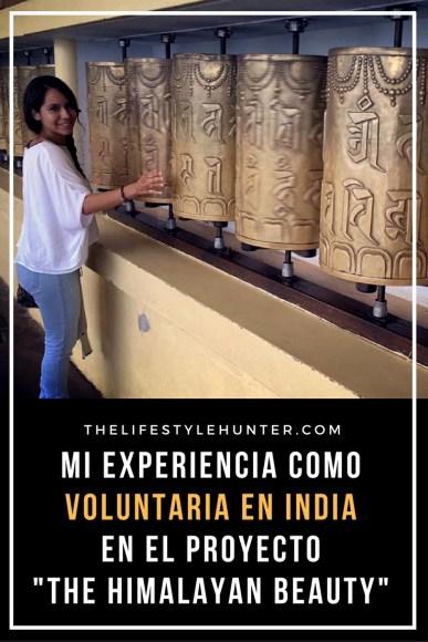 #thelifestylehunter #pilarnoriega Voluntariado en el extranjero: India, Himalayan Beauty, Dharamshala, Dharamkot, Dalai Lama, voluntariado extranjero, voluntario, voluntaria, voluntarios, voluntarias, proyecto de voluntariado, proyecto voluntariado, trabajo voluntario, ayudar, ong, trabajar ong, trabajar en ong, india, dharamsala, dharamshala, voluntariado en india, voluntariado india, fsl india, vacaciones, lugares extraordinarios, viaje, blogger de viajes, blog de viajes, turista, turismo