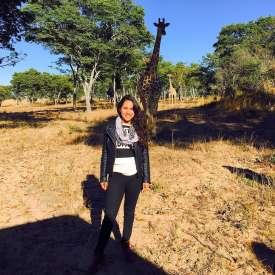 Africa - Zimbabwe - Imire Game Park - giraffe