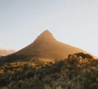 Travel Desk - Mojo Hotel Cape Town