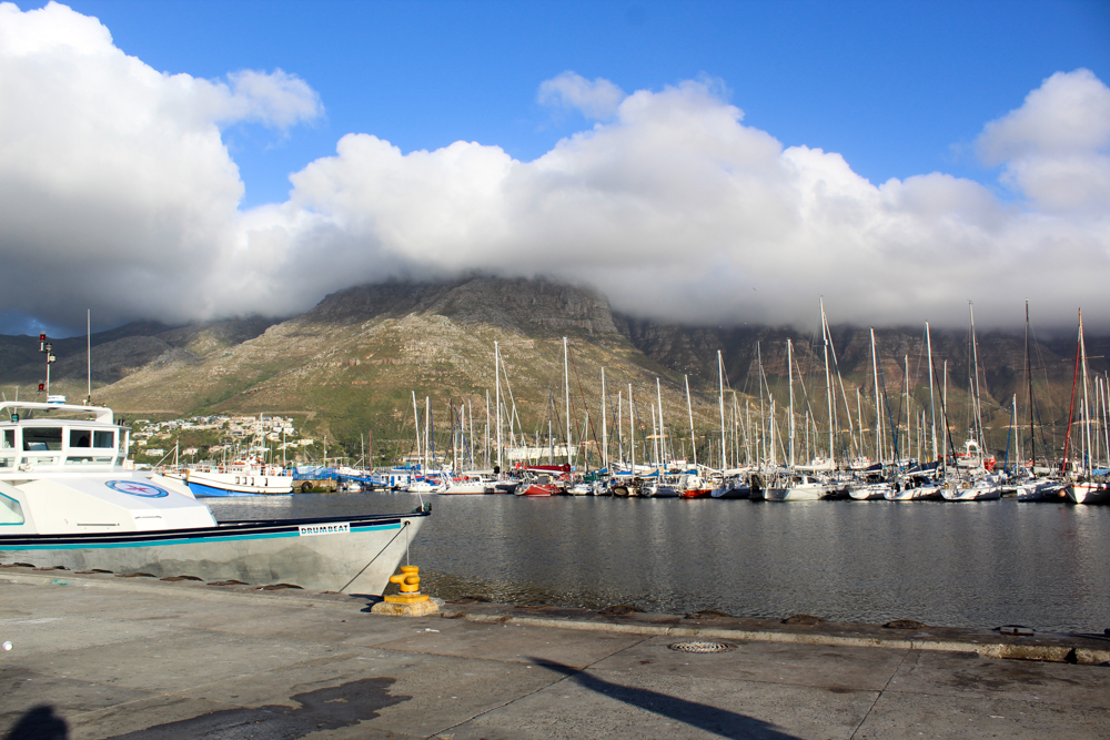 hout bay - Cape Town - South Africa