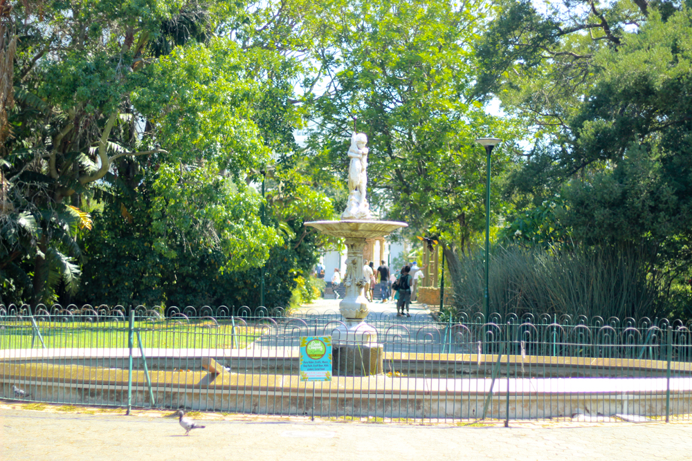 Rutherford Fountain -Companys Garden - Cape Town - South Africa