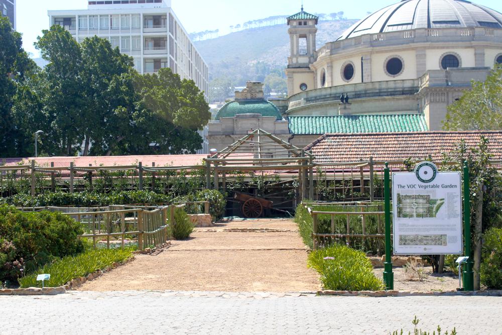 VOC Vegetable Garden - Companys Garden - Cape Town - South Africa