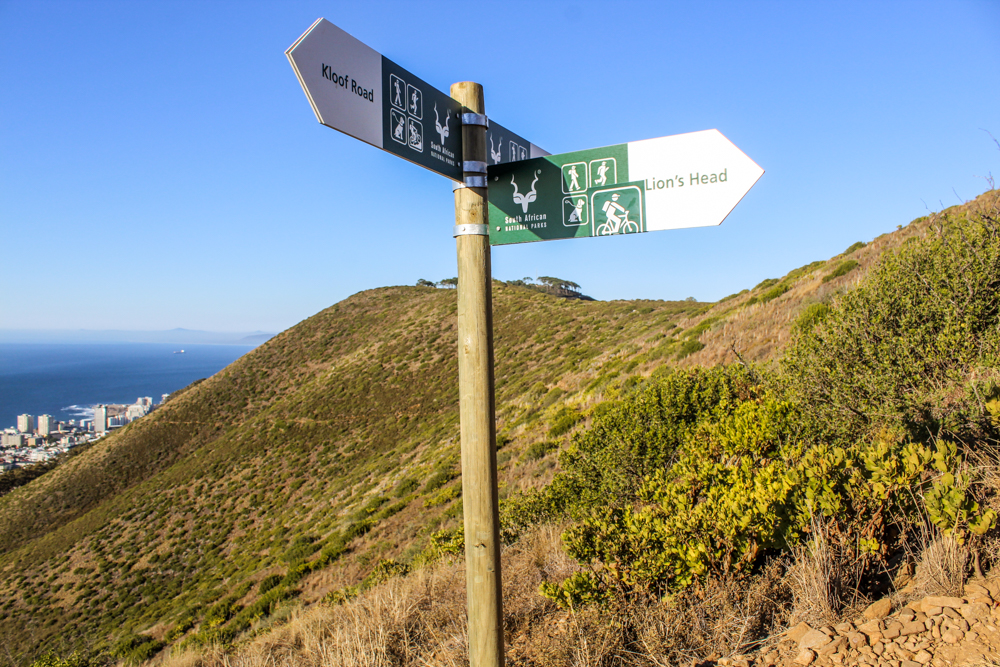 Signal Hill - lions head - Cape Town - south africa