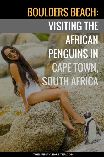#thelifestylehunter #pilarnoriega #Travel : boulders beach, foxy beach, penguin beach, penguins beach, african penguins, boulders, simons town, african crafts, boulders beach lodge and restaurant, Africa, Cape Town, cape point, fish hoek, Sea Point Promenade, Cape Town Hotel, Table Mountain, Devils Peak, Lions Head, Kruger safari, Stellensbosh, Hermanus, Cape Point, Garden Route, Groot Constantia, Kristenbosch, Boo-Kaap, Clifton Beach, V&A Waterfront, Camps Bay, Green Point Stadium, sandy bay