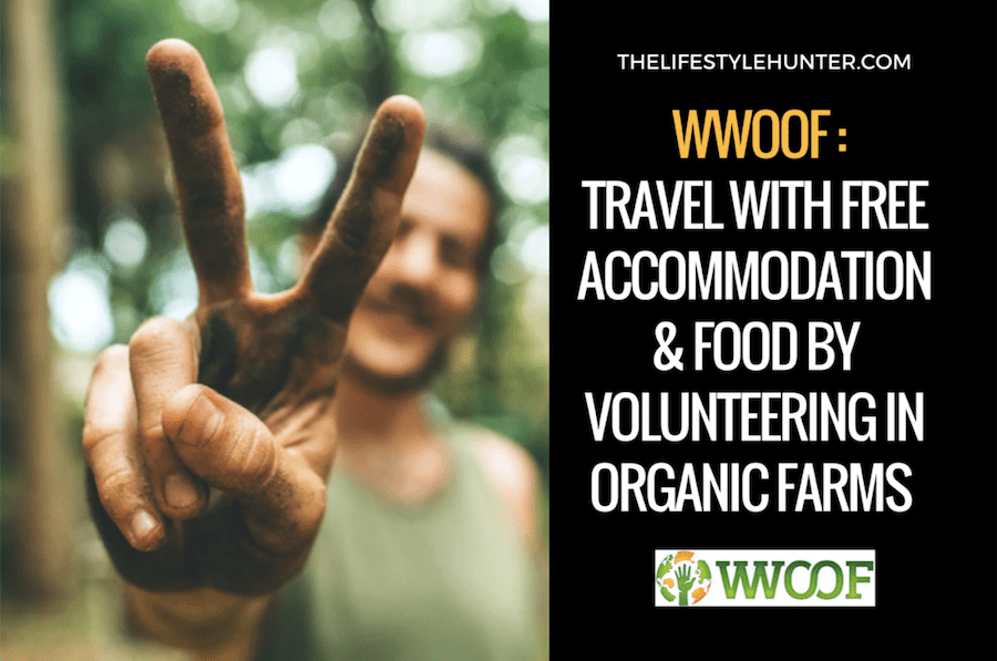 WWOOF: travel with free accommodation and food by volunteering on organic farms