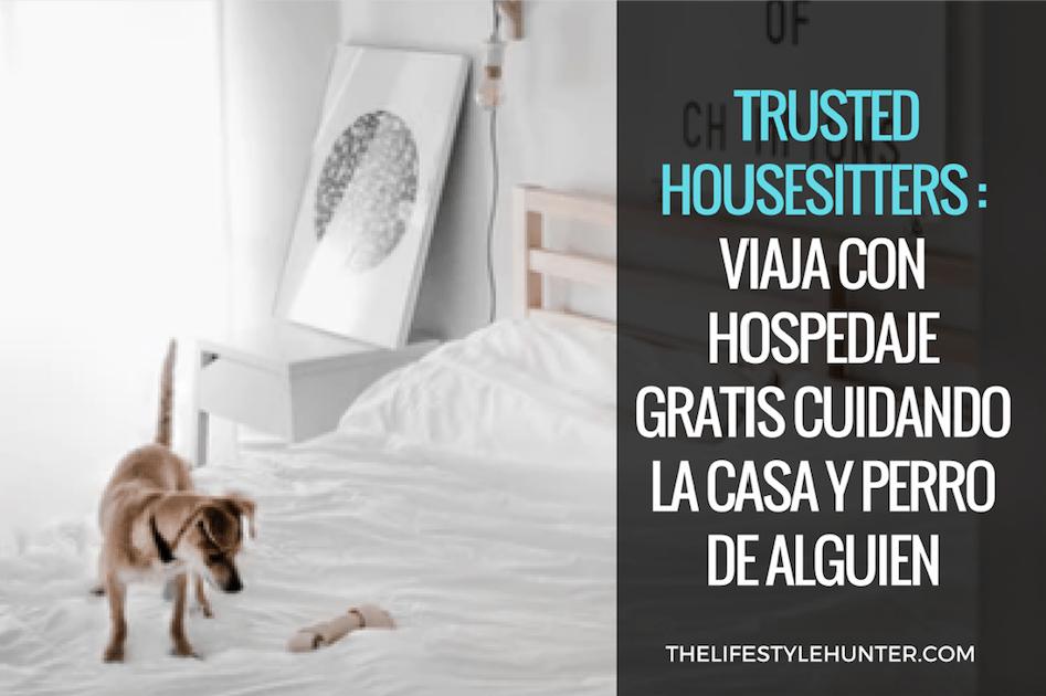 Trusted Housesitters: viaja con hospedaje gratis cuidando la casa y perro de alguien