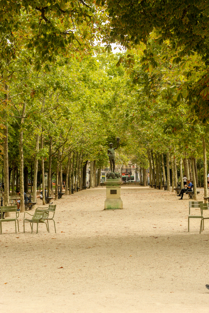 Jardin du Luxembourg - Paris - France - Europe - Travel