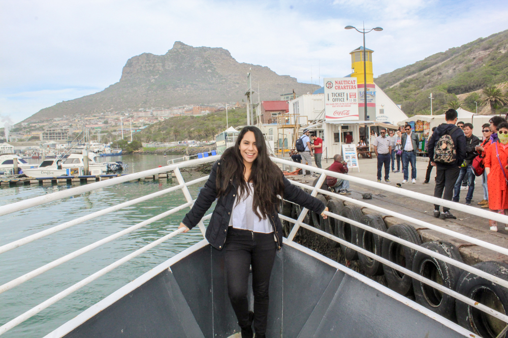 The best tours in Cape Town, South Africa