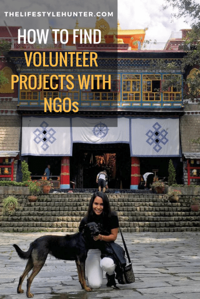 Volunteer - NGO