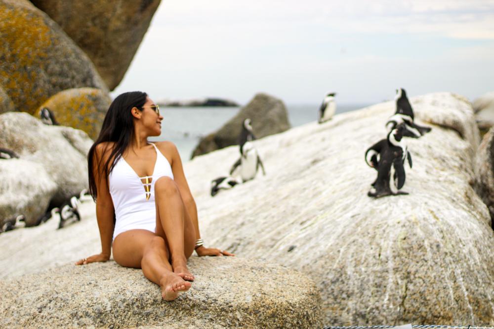 Boulders Beach - Ciudad del cabo - Sudafrica