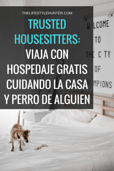 Voluntariado - Trusted Housesitters