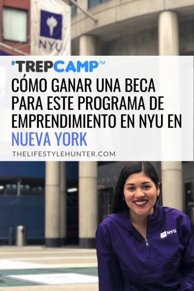 Estudiar - TrepCamp - NYU - Estados Unidos - Nueva York - beca