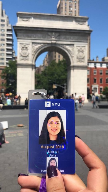 TrepCamp scholarship - NYU - Entrepreneurship - New York - United States USA