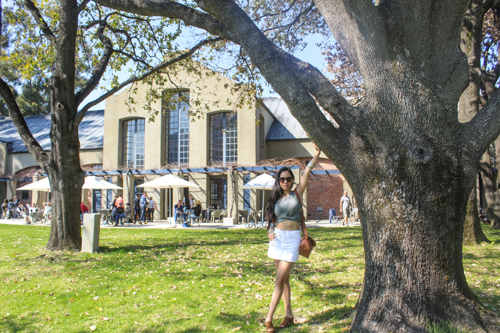 5 places you should visit in Tulbagh, South Africa