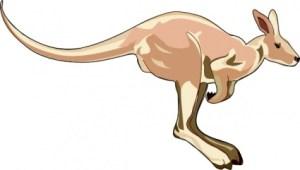 kangaroo-clip-art
