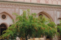 Kashan and Abyaneh-7371