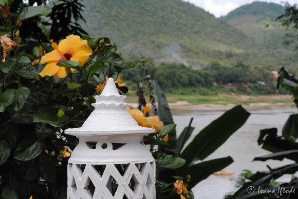 Laos-4071