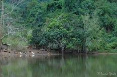 Laos-4141