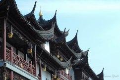 China-1299