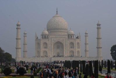 India-0661