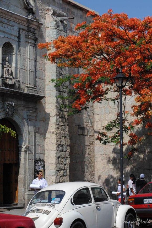 Mexico-2697