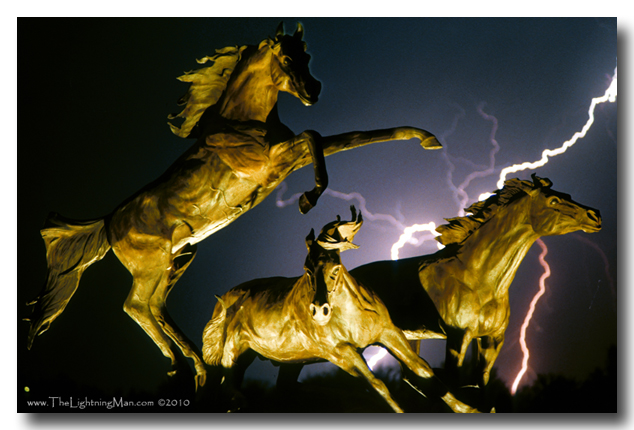 Lightning and horses color picture