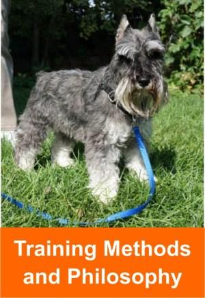 trainng_methods