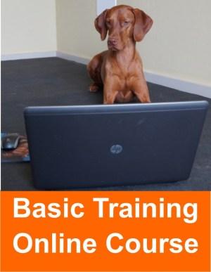 basic_training_online_course